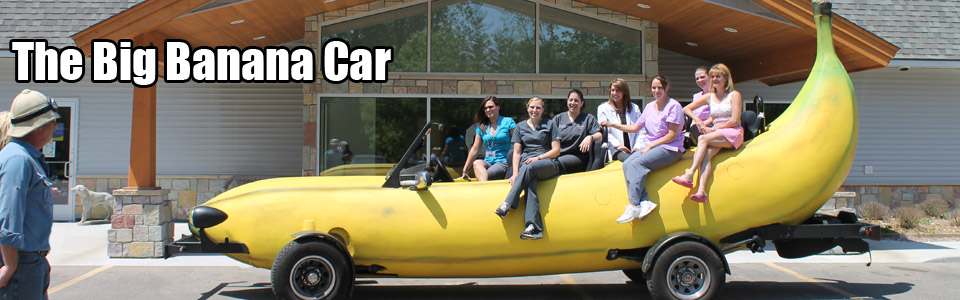 This is a photograph of the <strong>Big Banana Car</strong>.